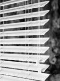 woodwinds, reed blind, s-curve, slats, wood tones