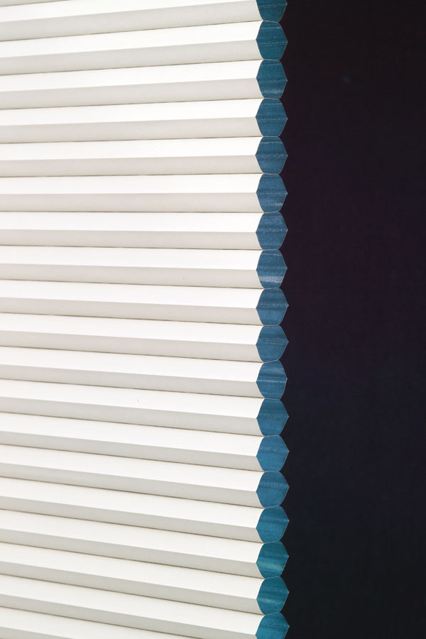 Single Honeycomb Cellular Free Shipping With Hot Blinds