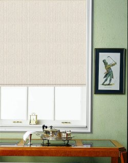 Budget Custom Roller Shade with Continuous Loop Chain With Splendor Light Filtering Polyester Fabric