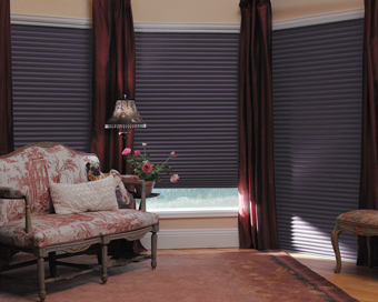 Graber Crystal Pleat Cellular Shades With Cocoon Blackout