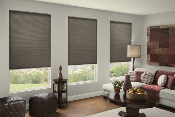 "Hotblinds Premier 3/8"" Double Cellular Light Filtering Shade"